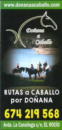 DONANA A CABALLO 17